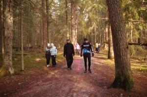 Taevaskoja walking route in Estonia