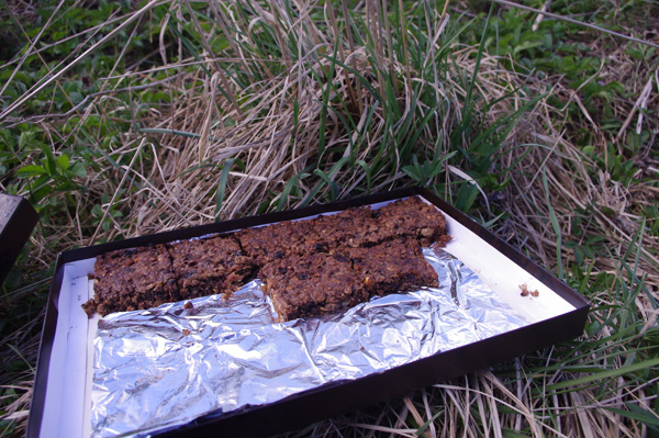 Energy bars from oatmeal.