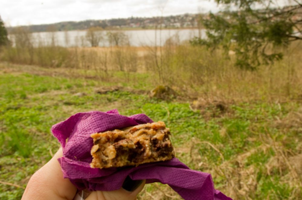 My oatmeal bars are great for hikes!